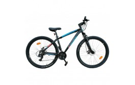 ENERGY Enigma 29'' Disc